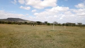 YWAM Athi River - Football Field